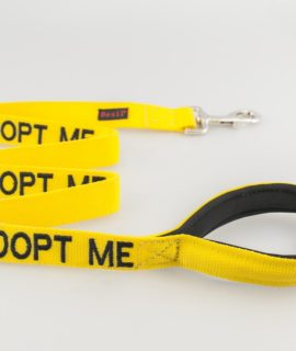 Adopt Me Dog Lead (yellow)