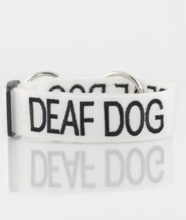 Deaf Dog Collar (white)