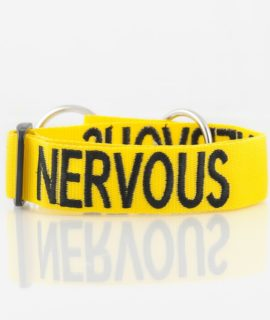 Nervous Dog Collar (yellow)