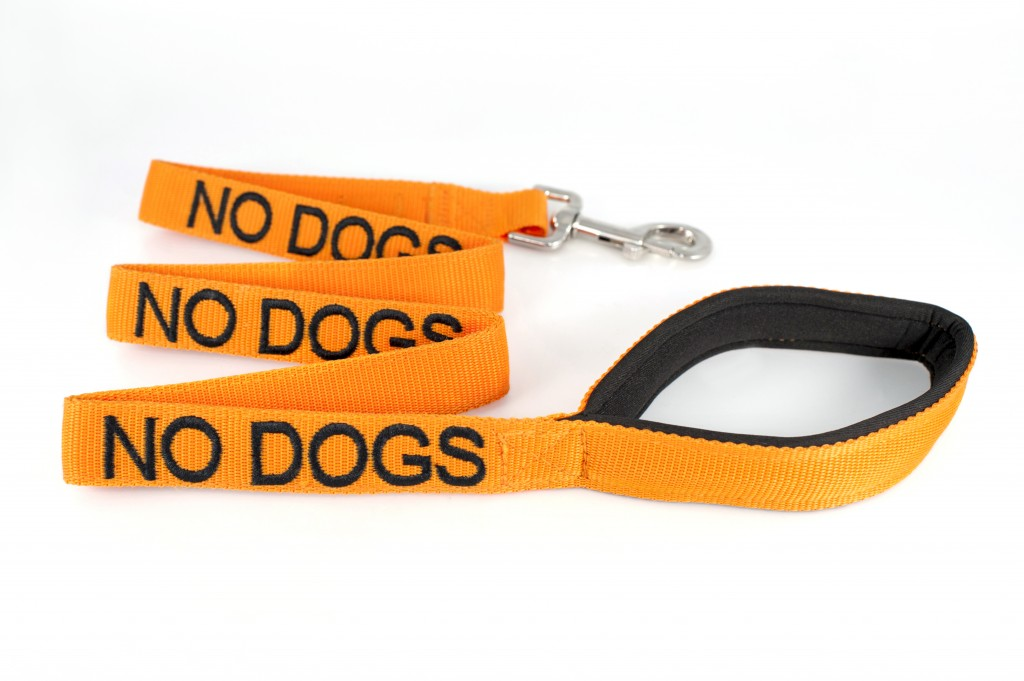 no dogs lead