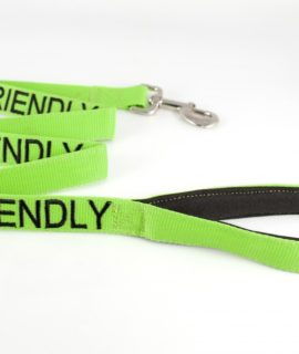 Friendly Dog Lead (green)