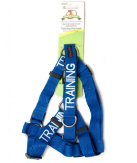 Training Strap Harness (blue)