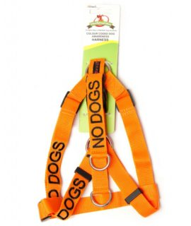 No Dogs Strap Harness (orange)
