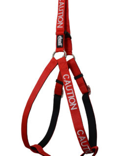 Caution Strap Harness (red)