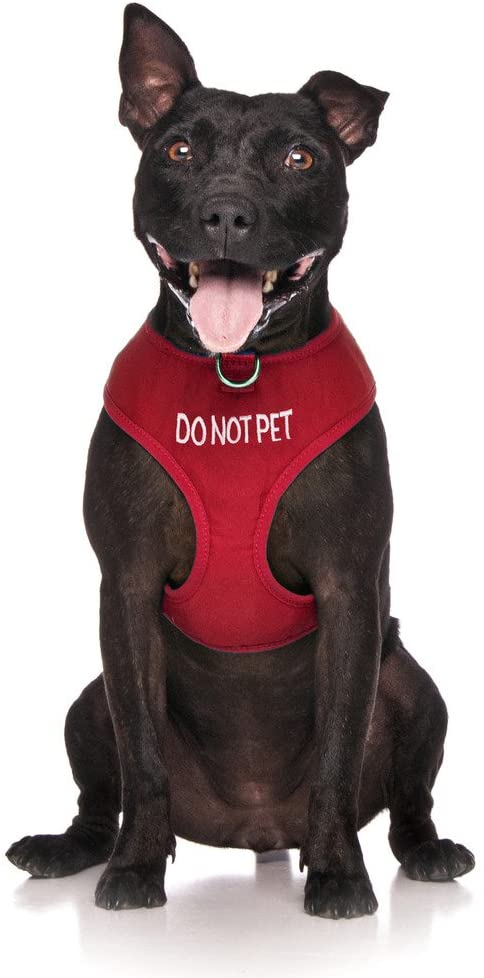 Do not pet vest